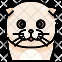 Scottish Fold Cat Cat Face Icon