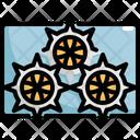 Sea Urchin Seafood Icon