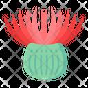 Sea Anemone Icon