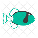 Sea Creature Animal Fish Icon