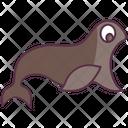 Animal Sea Lion Seal Icon