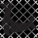 Sea Lion Lion Sea Icon