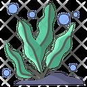 Sea Plant Icon