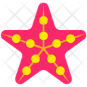 Summer Sea Star Fish Icon