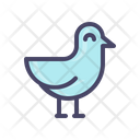 Gull Sea Bird Icon