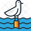 Seagull Bird Seabird Icon
