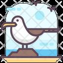 Seagull Bird Gulls Icon