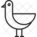Seagull Bird Animal Icon