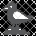 Seagull Bird Gull Icon