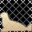 Creature Animal Wild Icon