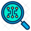 Search Network Icon