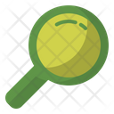Search Zoom Magnifying Icon