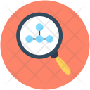 Search Graph Chart Icon