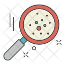 Bacteria Search Icon