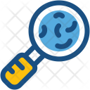 Search Bacteria Magnifying Icon