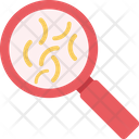 Search Bacteria Magnifying Glass Magnifier Icon