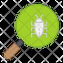 Search Bug Icon