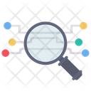 Network Connection Search Icon