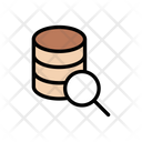 Search Database Storage Icon