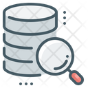 Magnifier Data Database Icon