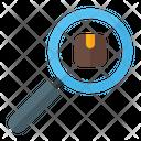 Search Delivery Box Icon