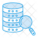 Server Database Search Icon