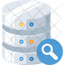 Search In Databse Database Search Search Data Icon