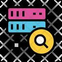 Server Search Glass Icon