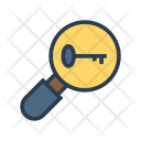 Key Search Magnifier Icon