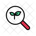 Leaf Search Lab Icon