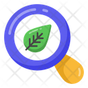 Search Leaf Ecology Research Leaf Analysis Icon