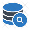 Storage Search Database Icon