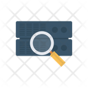Search Server Magnifier Icon
