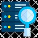 Search Servver Icon