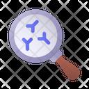Search Antibodies Antibody Magnifying Glass Icon