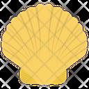 Seashell Mollusk Mollusc Icon