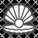 Seashell Pearl Shell Icon