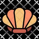Seashell Icon