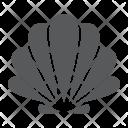 Seashell Animal Underwaer Icon