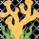 Seaweed Icon