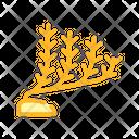 Marine Seaweed Color Icon