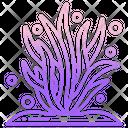 Seaweed Sea Plant Plant Icon