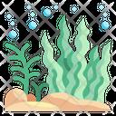 Seaweed Algae Ocean Marine Sea Icon