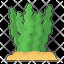 Seaweeds Algae Gulfweed Icon