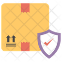 Secured Package Package Protection Secured Delivery Icon