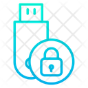 Data Security Lock Secure Pendrive Icon