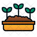 Seed Leaves Plant Icon