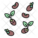 Seed Bean Sprout Icon