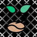Plant Growth Soil Icon