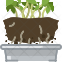 Seeding Tin Flower Icon